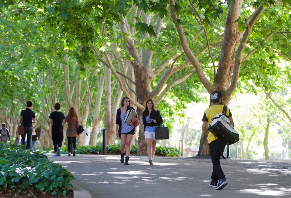 Scopri perché scegliere Macquarie University di Sydney