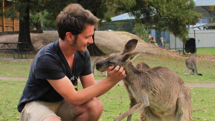 borsa di studio per un dottorato in Australia