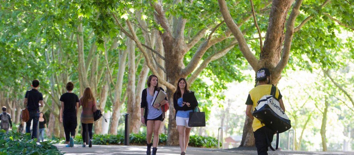 Macquarie University Walk