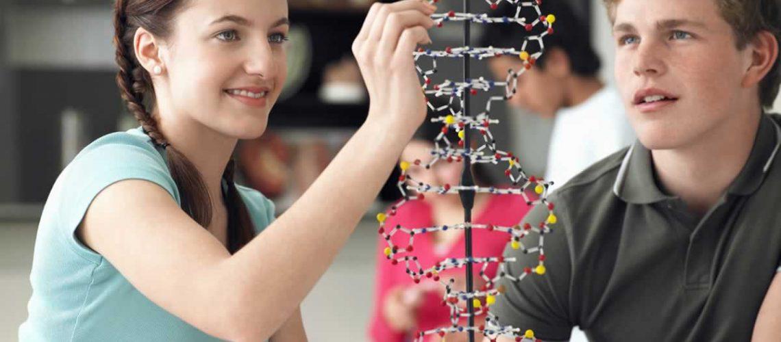 Anno scolastico in australia: quali sono le opportunità?